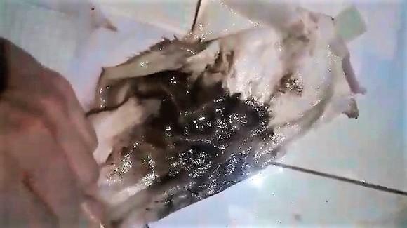 Người dân lo lắng khi sử dụng nước bẩn đục do Công ty CP Cấp nước Thừa Thiên - Huế cung cấp ảnh 2