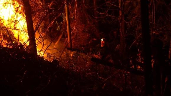 Khống chế đám cháy rừng trong đêm ở Hà Tĩnh ảnh 1