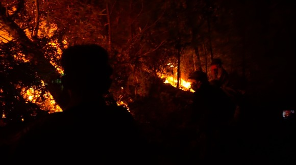 Khống chế đám cháy rừng trong đêm ở Hà Tĩnh ảnh 3