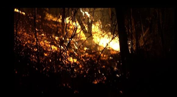 Khống chế đám cháy rừng trong đêm ở Hà Tĩnh ảnh 4
