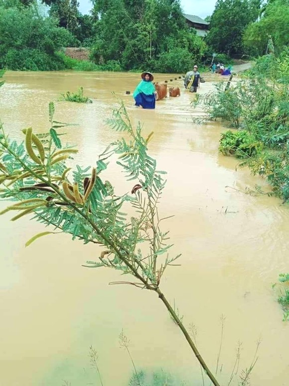 Mưa lớn nhiều xã miền núi ở Hà Tĩnh bị ngập lụt, chia cắt cục bộ ảnh 1