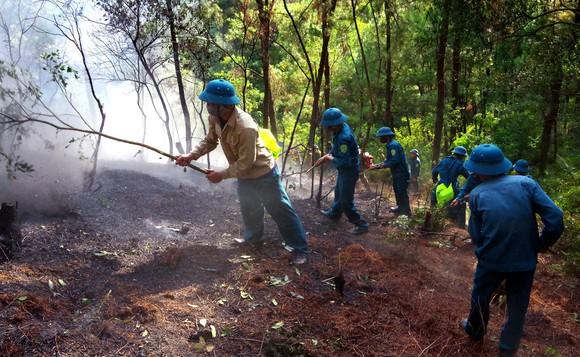 Cơ bản khống chế được đám cháy rừng ở Hà Tĩnh ảnh 2