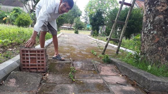 Di tích đình Hội Thống và đình làng Trường Lưu ở Hà Tĩnh hư hỏng nặng ảnh 5
