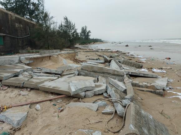 Ngư dân Hà Tĩnh gấp rút đưa tàu thuyền vào nơi tránh trú trước bão số 8 ảnh 5