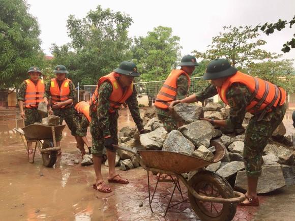 Huy động lực lượng kịp thời gia cố sạt lở bờ sông ở Hà Tĩnh ảnh 6