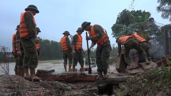 Huy động lực lượng kịp thời gia cố sạt lở bờ sông ở Hà Tĩnh ảnh 7