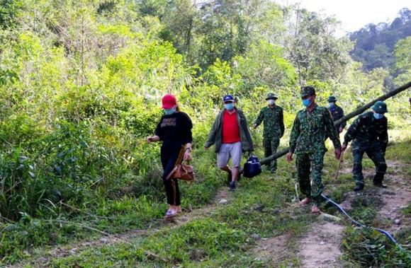 Lực lượng Bộ đội Biên phòng Hà Tĩnh phát hiện, bắt giữ 2 đối tượng đang cắt rừng vượt biên trái phép vào Việt Nam
