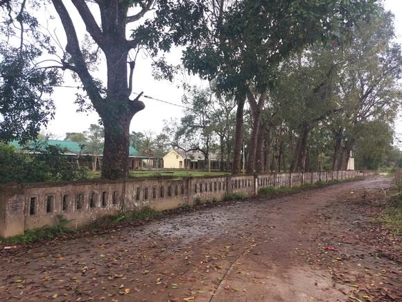 Hoang tàn nơi từng là Trung tâm Phục hồi chức năng và dưỡng sinh Võ Hoàng Yên ở Hà Tĩnh ảnh 2