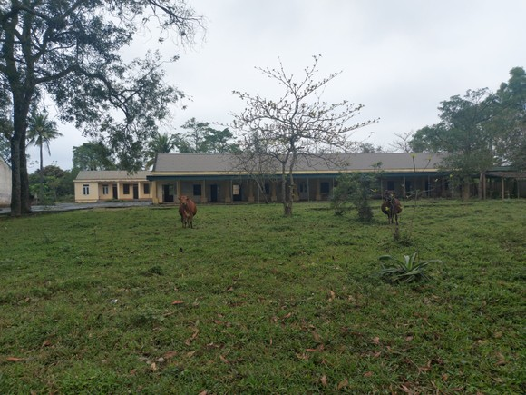 Hoang tàn nơi từng là Trung tâm Phục hồi chức năng và dưỡng sinh Võ Hoàng Yên ở Hà Tĩnh ảnh 4