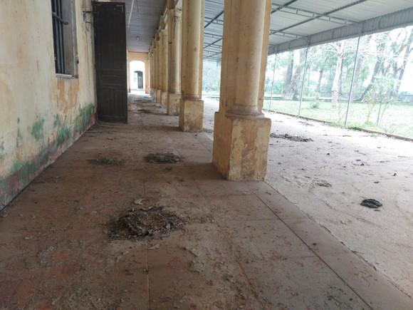 Hoang tàn nơi từng là Trung tâm Phục hồi chức năng và dưỡng sinh Võ Hoàng Yên ở Hà Tĩnh ảnh 24