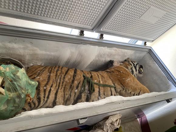 Hà Tĩnh: Phát hiện xác hổ đông lạnh nặng 160kg trong nhà dân ảnh 3