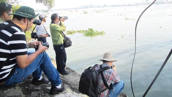Các nhà nghiên cứu và phóng viên  khảo sát ô nhiễm trên sông Đồng Nai