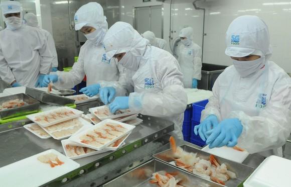 Chế biến thực phẩm tại SG Food. Ảnh: CAO THĂNG