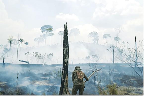 Hoạt động chữa cháy rừng ở Brazil