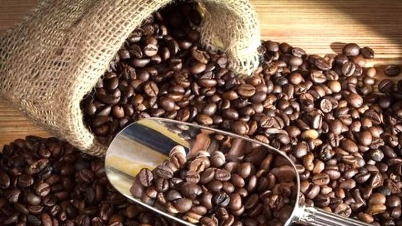 Caffeine có tác dụng chống lại khối u ác tính