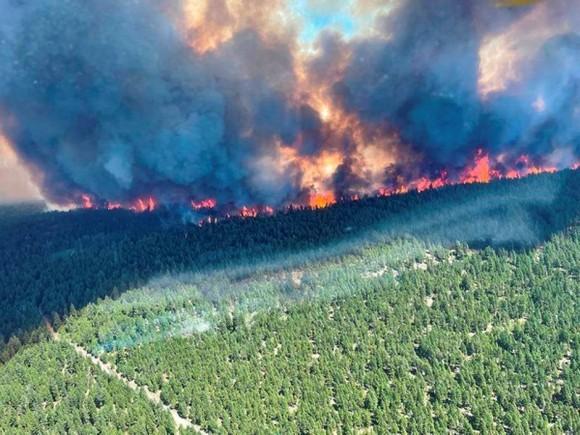 Cháy rừng ở British Columbia, Colombia ngày 29-6-2021. Ảnh: REUTERS