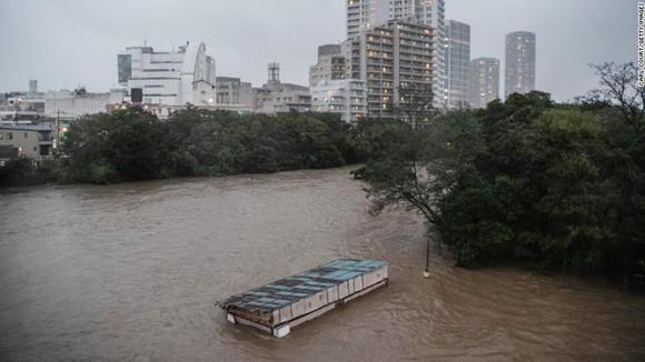 Nhật Bản tan hoang sau siêu bão Hagibis ảnh 3