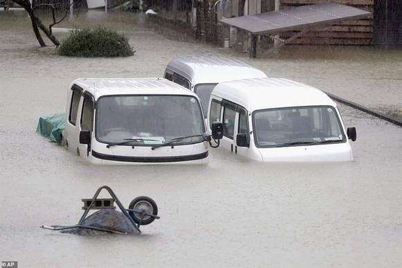 Nhật Bản tan hoang sau siêu bão Hagibis ảnh 12