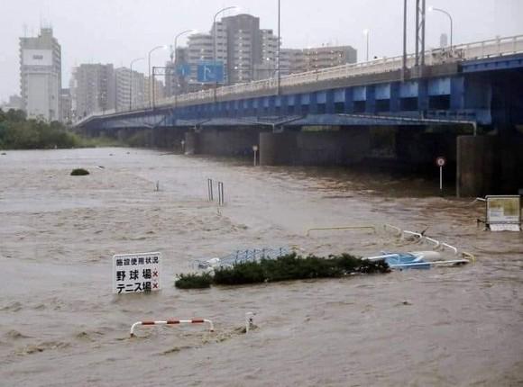 Nhật Bản tan hoang sau siêu bão Hagibis ảnh 13