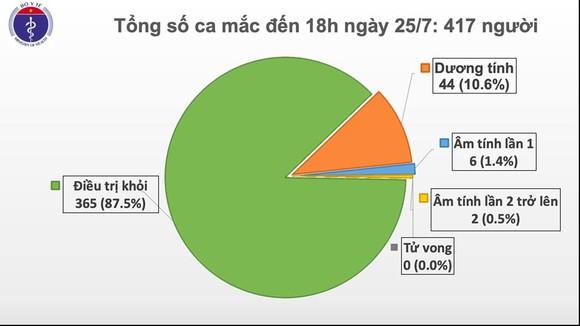 Thêm 2 ca bệnh Covid-19, Việt Nam có 417 ca bệnh ảnh 1