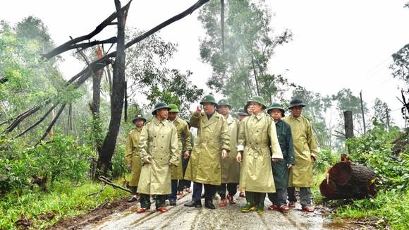 Phó Thủ tướng Trịnh Đình Dũng chỉ đạo công tác cứu hộ tại thủy điện Rào Trăng 3 ảnh 1