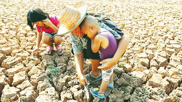 Một phụ nữ Thái Lan bắt ốc trong các vết nứt của một hồ khô hạn ở tỉnh Udon Thani. Ảnh: EPA