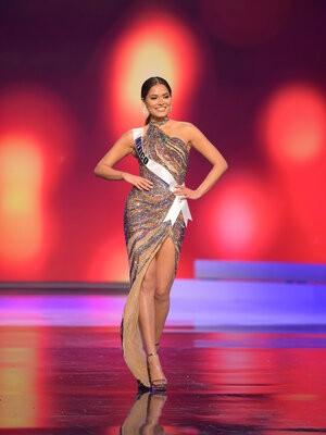 Người đẹp Mexico đăng quang Hoa hậu Hoàn vũ 2020 ảnh 19