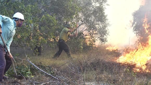 Lực lượng kiểm lâm và ban cấp bách PCCC rừng ở Quảng Bình dập lửa một vụ cháy rừng ven biển trong năm 2021. Ảnh: MINH PHONG