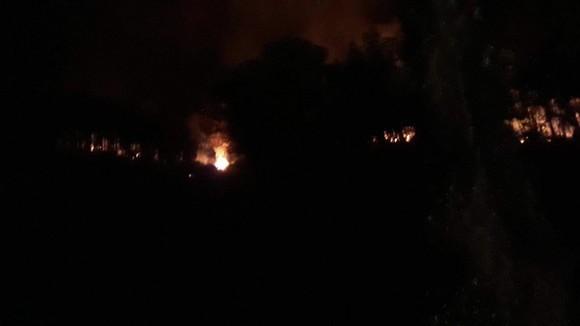 Thừa Thiên - Huế cùng lúc xảy ra nhiều vụ cháy rừng ảnh 2