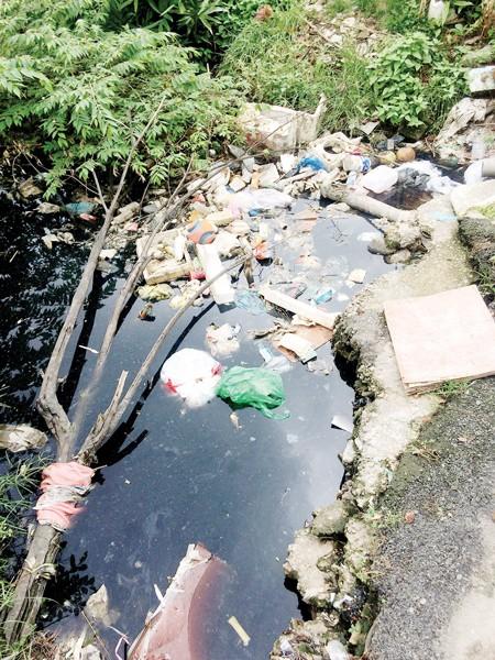 Nước thải sinh hoạt bị ùn ứ bốc mùi do lối thoát bị tắc nghẽn