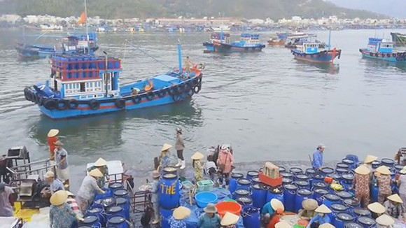 Huy động các nguồn lực bên ngoài để xây dựng 5 trung tâm nghề cá lớn
