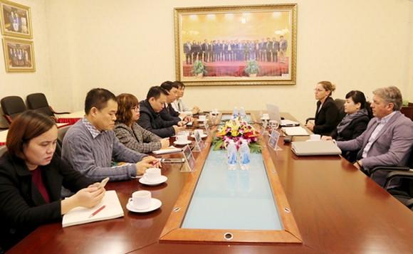 Chuyên gia FIFA làm việc với lãnh đạo VFF và các phòng chức năng