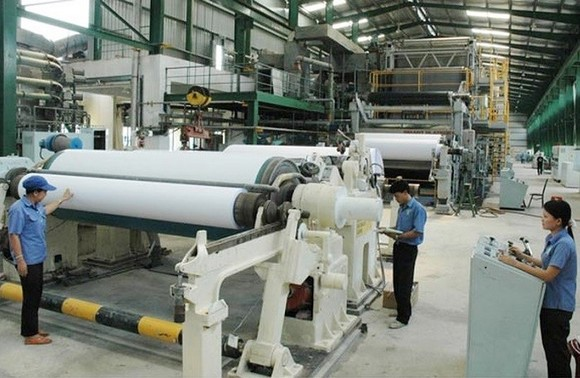 Nhà máy giấy Tân Mai Miền Đông lắp đặt thiết bị công suất 150 ngàn tấn giấy/năm