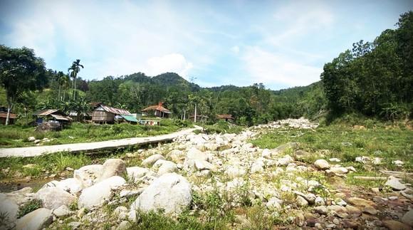 Miền Trung trước mùa mưa, bão: Ưu tiên nguồn lực tái thiết cơ sở hạ tầng ảnh 1