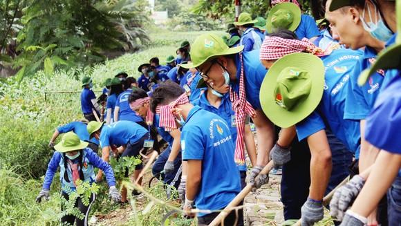Sinh viên tham gia thi công công trình trong chiến dịch tình nguyện Mùa hè xanh