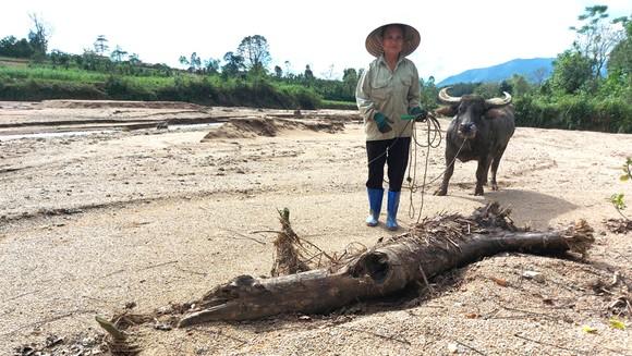 Bà Nguyễn Thị Tý (ở xã Kỳ Thượng, Kỳ Anh, Hà Tĩnh) trên diện tích đất ruộng đã bị đất đá, cát sỏi vùi lấp. Ảnh: DƯƠNG QUANG