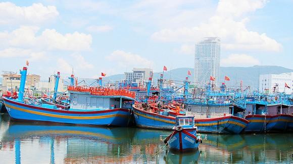 Nhiều tàu cá của ngư dân Bình Định không đủ điều kiện để được Nhà nước hỗ trợ nhiên liệu do thiết bị VMS liên tục bị gián đoạn