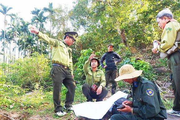 Lực lượng bảo vệ rừng liên tỉnh đang tuần tra, khảo sát rừng ở vùng giáp ranh ngã ba Quảng Ngãi - Kon Tum - Quảng Nam (ảnh chụp trước khi dịch Covid-19 bùng phát). Ảnh: XUÂN HUYÊN