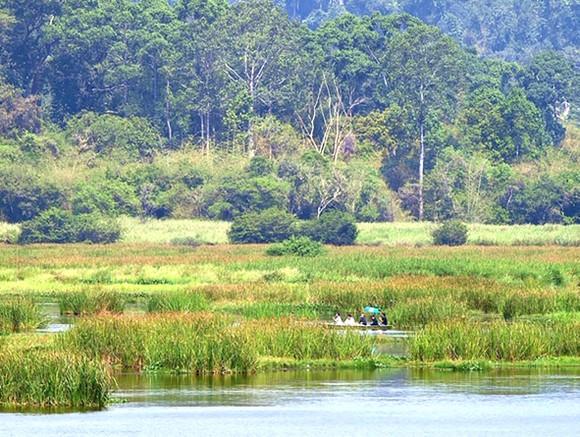 Xử lý nghiêm vi phạm về bảo vệ môi trường ảnh 1