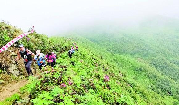 Ký sự Marathoner: Vượt đỉnh Hoàng Liên Sơn hùng vĩ ảnh 1