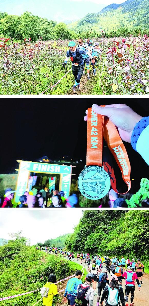 Ký sự Marathoner: Vượt đỉnh Hoàng Liên Sơn hùng vĩ ảnh 2