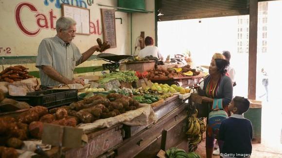 Cuba mở rộng kinh tế tư nhân ảnh 1