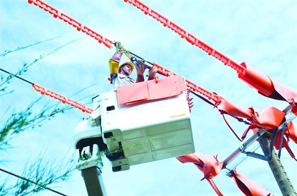 Tổng Công ty điện lực miền Nam (EVN SPC): Chuyển từ cung cấp điện thuần tuý sang chăm sóc khách hàng sử dụng điện ảnh 1