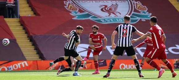 Sát thủ Willock gieo sầu cho Liverpool ảnh 1
