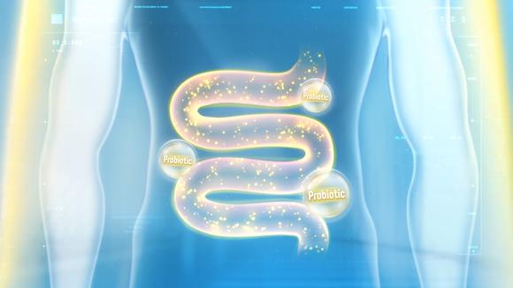 Tăng cường đề kháng với lợi khuẩn probiotic để phòng chống dịch bệnh Covid-19 ảnh 1
