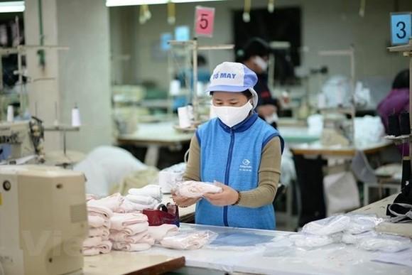 Sản xuất khẩu trang. (Ảnh: Đức Duy/Vietnam+)
