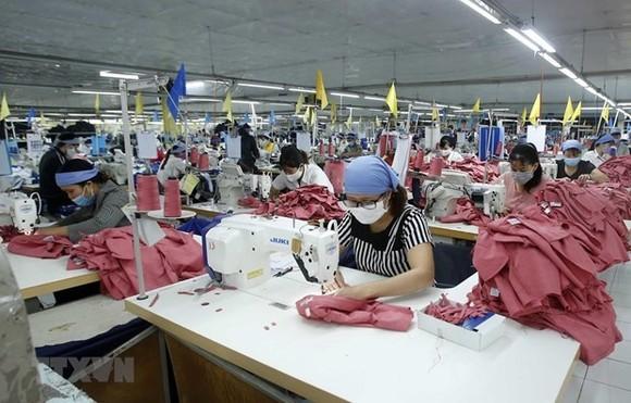 Sản xuất sản phẩm may mặc tại Công ty Cổ phần may Tiên Hưng (huyện Tiên Lữ). (Ảnh: Phạm Kiên/TTXVN)