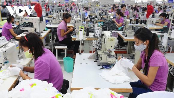 Giai đoạn 2022-2023 ngành dệt may sẽ từng bước hồi phục, bật lên mạnh mẽ.
