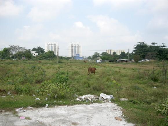 Khu đất giao cho trường trung cấp Phương Nam xây dựng trường  (phường Tân Thới Nhất, Quận 12) bị đề xuất thu hồi do không triển khai nhiều năm nay.