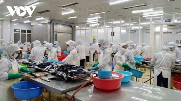 Cho đến nay các doanh nghiệp của Việt Nam cũng đã làm quen với việc thực hiện các cam kết cũng như tận dụng được các ưu đãi từ các FTA.